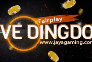Live Dingdong Online Fair Jayagaming
